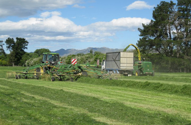Flintoft Contracting Culverden Silage Contractors