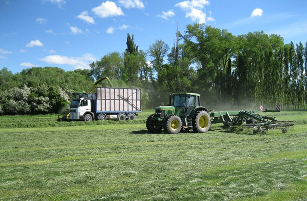 Flintoft Contractors Grass silage specialists