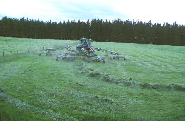 Raking grass Flintoft Contractors